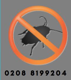 Pest Control Southwark